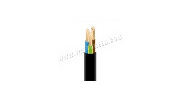 Câble XVB 3G10 - 1m