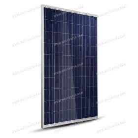 Panneau solaire TrinaSolar poly 275Wc