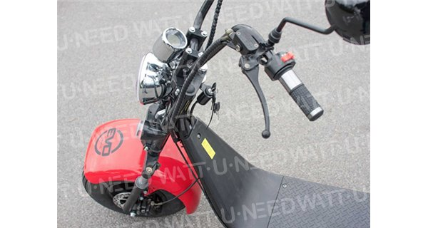 Electric scooter Evo FatScoot