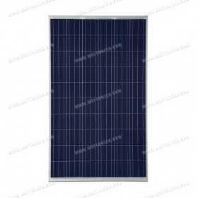 Panneau solaire TrinaSolar poly 270Wp