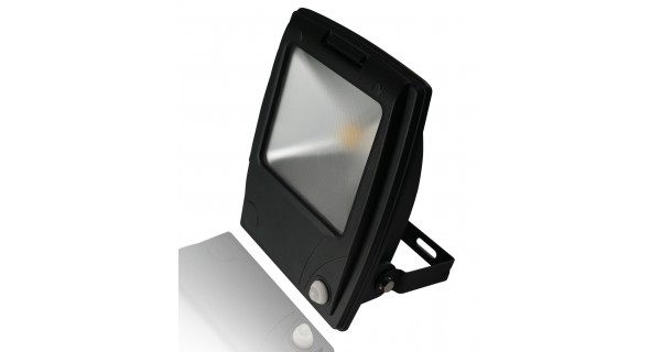Spot LED Flood Light 50W
