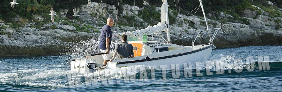 moteur bateau cruise T 2.0
